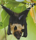 Bats by Melissa Gish (Paperback / softback, 2011)