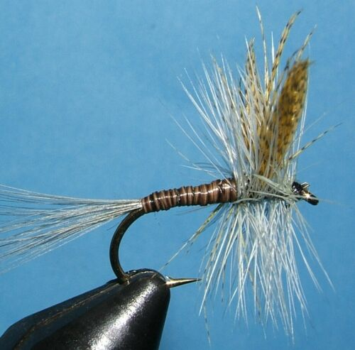 Quill Gordon Mayfly sizes 12 flies 14 12 10