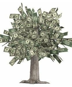Image result for money tree