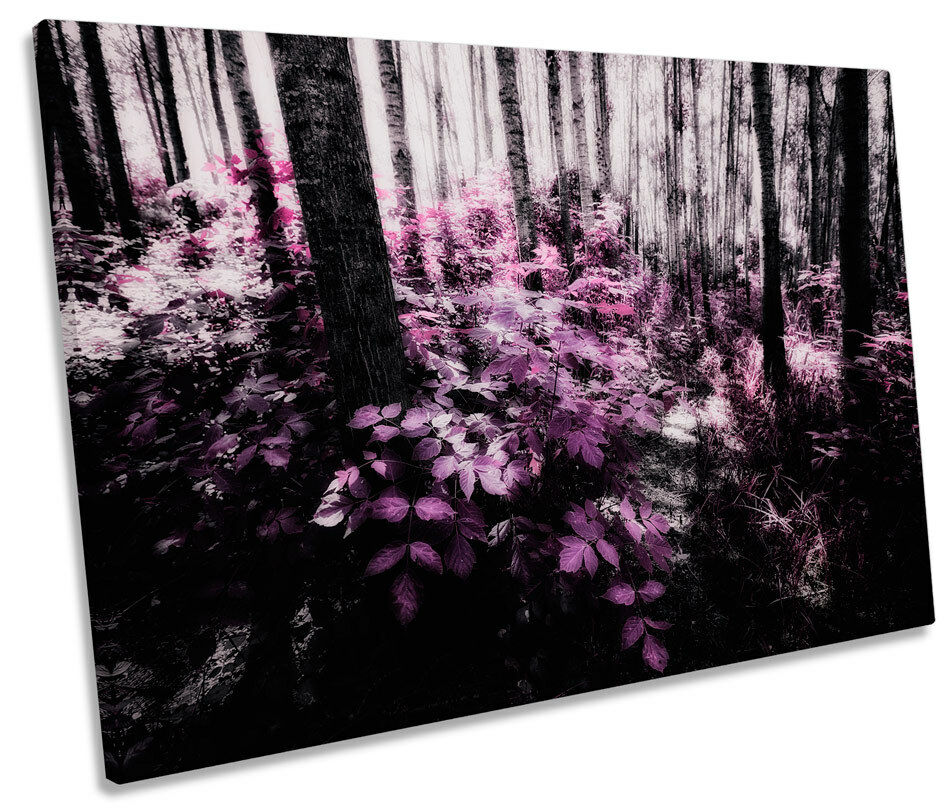 Landscape Scene Floral Forest SINGLE CANVAS WALL ART Picture Print