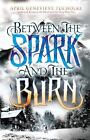 Between the Spark and the Burn by April Genevieve Tucholke (2014, Hardcover)
