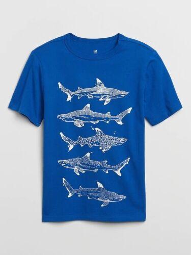 NWT GAP KIDS BOYS T-SHIRT TOP blue sharks   u pick size