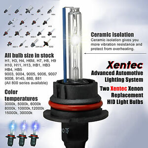 Hid Light Bulbs >> Two Xentec Xenon H8 H9 H11 Hid Light Bulb Headlight Fog Light 3k