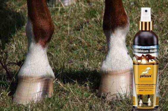 Pferdepflege bei bei Pferdepflege Mauke - Fesselbeuge Fesselbeugenpflege | 1 Liter 0addac