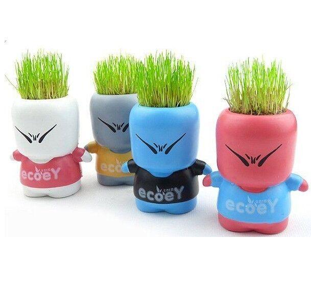 DIY CiBoys Magic Grass Plant Pot Grass Head Doll Toy
