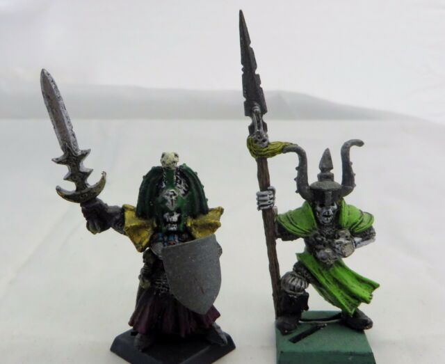 Warhammer   Vampire Counts Wight Champions 2   painted OOP  metal army lot