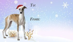 Whippet Dog Self Adhesive Gift Labels by Starprint