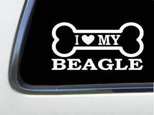 "I LOVE MY BEAGLE 8/"" AS584 car sticker decal ThatLilCabin"