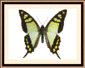 Butterfly-8513-Cross-Stitch-Kit