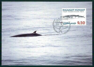 GrÖnland Mk 1996 Fauna Wal Wale Wahle Whales Baleine Maximumkarte Mc Cm En77