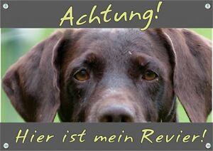 Wirehaired allemand - panneau d'avertissement de chien bouclier métallique résistant aux intempéries