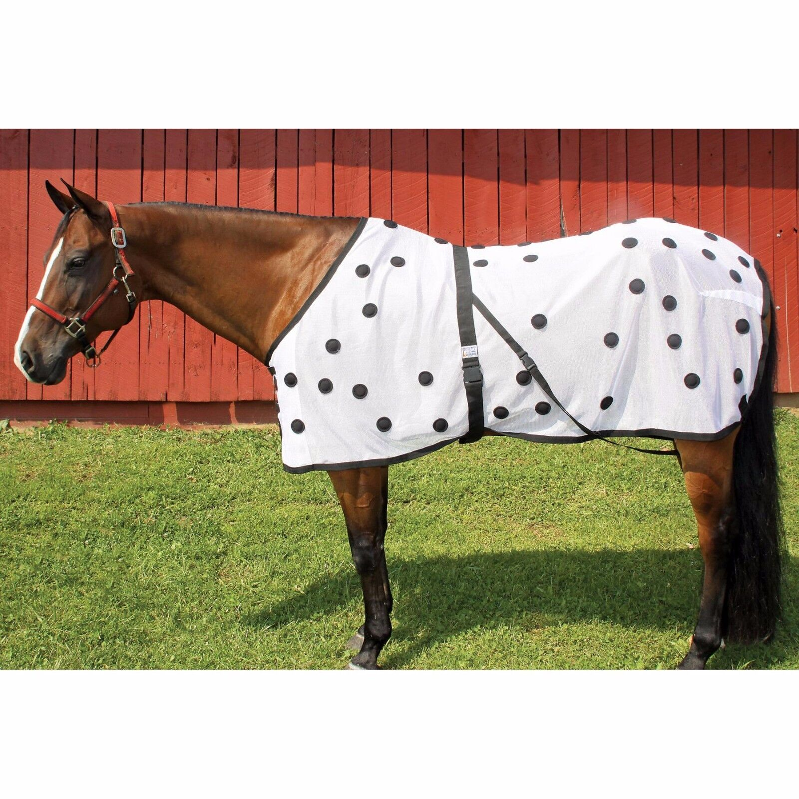 Dura-Tech Magnetic  Horse Sheet - FREE SHIPPING  promotional items