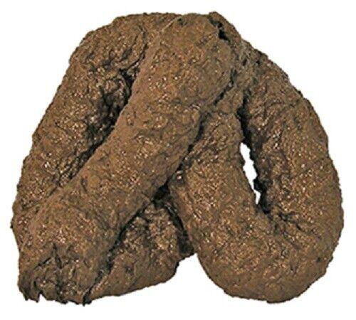 Fake Dog  Poop  Realistic Doggy Doo Doo Dirt Joke Gag