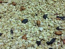 Winter Fettfutter 25 kg Premium Qualität besonders Fett mit Erdnüssen & Rosinen
