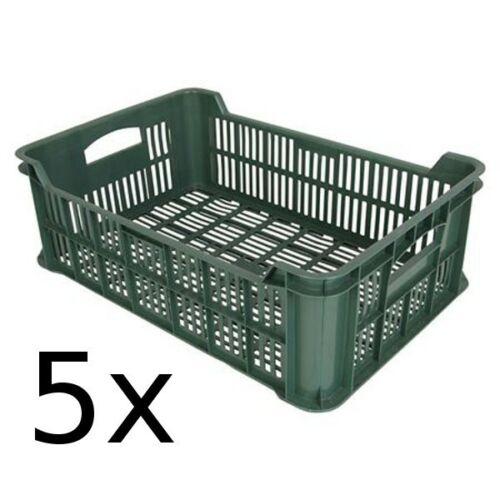 5x Obst und Gemüsekiste Kartoffelkiste Kiste Lagerkiste Gemüse Transportkiste