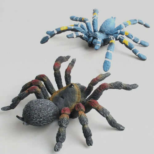 Simulation Insect Wild Spider Animal Model For Kids Child Leaning Plastic Toy N7