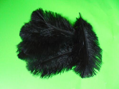 lot de 5 plumes autruche noir 15 a 20 cm