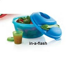 Tupperware SALAD ON THE GO SET w/ Fork, Knife & Midget Tupper Dressing Container