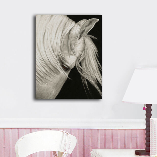 30×40×3cm White Horse Canvas Prints Framed Wall Art Home Decor Painting