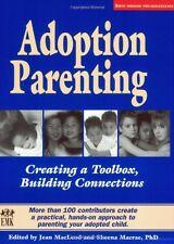 Adoption Parenting: Creating a Toolbox, Building C