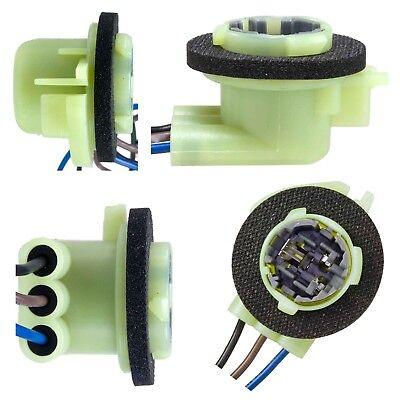 Airtex 6S1084 Light Socket