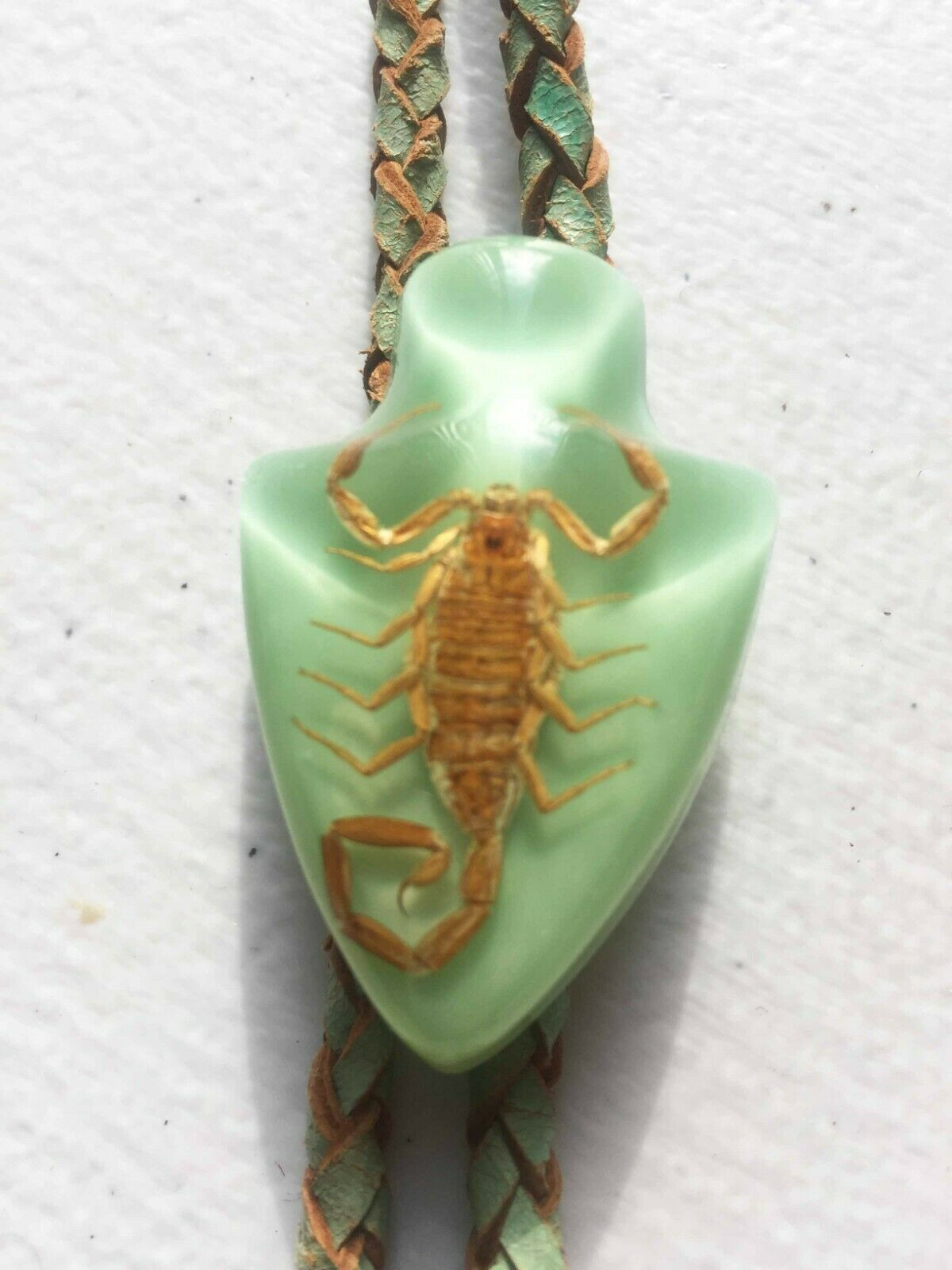 70s Bolo tie, REAL SCORPION in slide! Scorpions, way cool, Arrowhead