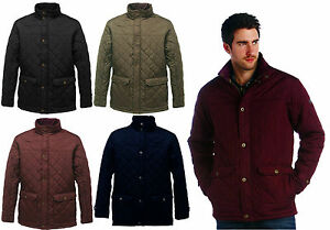 ba12e48fc8d Image is loading Regatta-Rigby-Jacket-Mens-Thermo-Guard-Insulated-Water-