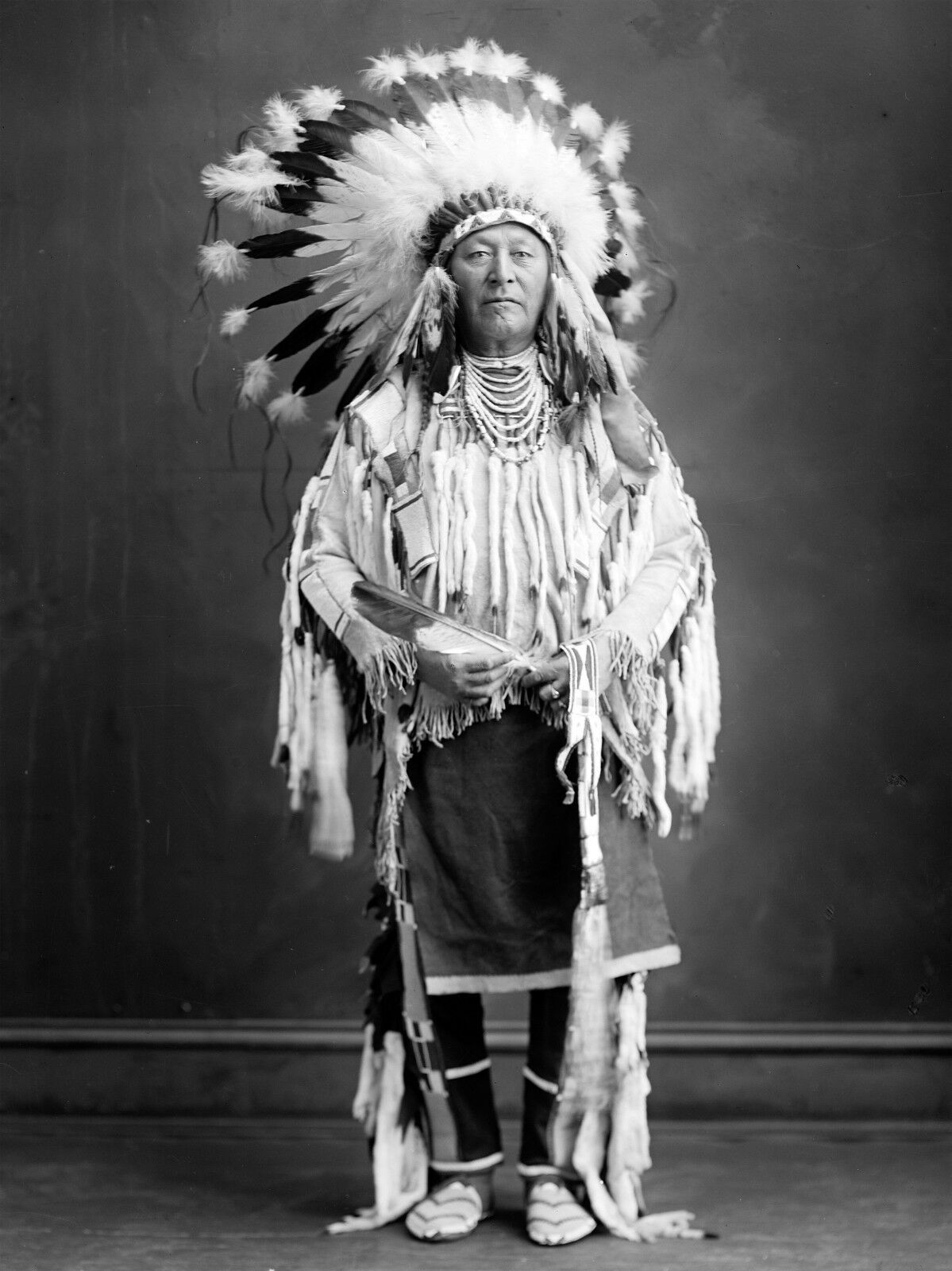 Chief Plenty Coups Indiana