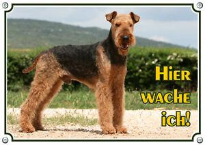 Bouclier pour chien - Bouclier en métal Airedale Terrier Qualité durable