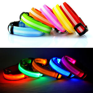Pet-Dog-Cat-Puppy-LED-Flashing-Collar-Safety-Night-Light-Pendant