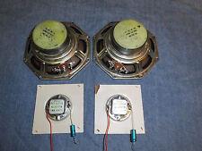 Philips  full range speaker  AD7062/M8 + tweeter  AD2071/T8  vintage Hornspeaker