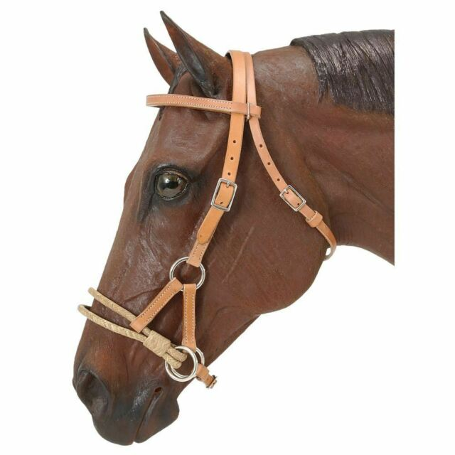 Double ring sidepull horse training aid dark oil leather