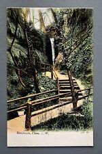 R&L Postcard: JWS 65 J Welch Shanklin Chine Isle of Wight