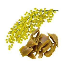 1-OZ-Mimosa-Wax