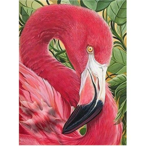 Diamond DIY Painting Red Bird  Full Square Drills Hand Embroidery Wall Displays