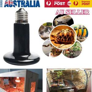 Pet-Ceramic-Heating-Lamp-25W-50W-75W-100W-150W-200W-IR-Heat-Emitter-Bulb-Vd