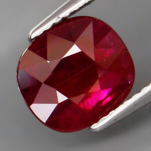 2-57Ct-UNHEATED-Best-Color-Natural-Hot-Red-Ruby-Mozambique-Lichinga