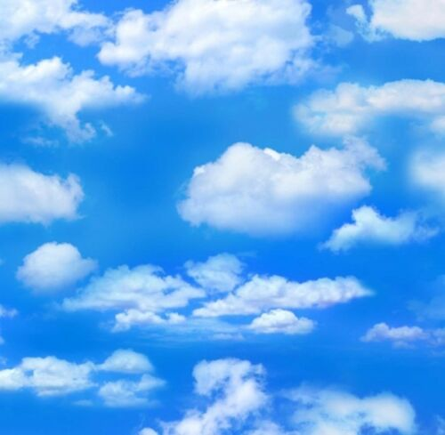 Elizabeth/'s Studio Landscape Medley Quilt Fabric Blue Sky Style 369B