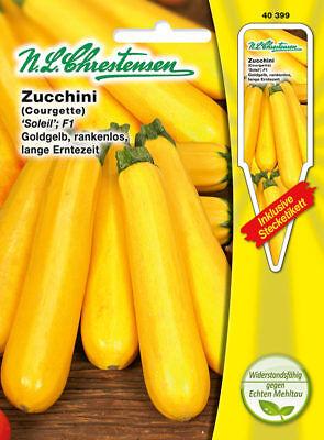 Kiepenkerl Saatgut Zucchini Soleil F1