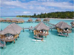 Vacation Destination from Bim Travel