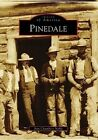 Pinedale by Ann Chambers Noble (Paperback / softback, 2008)