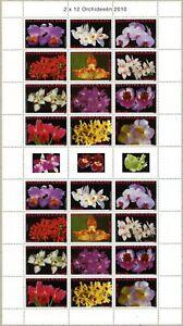 Suriname-2010-ORCHIDEE-FIORI-FIORI-PIANTE-Orchids-2405-2416-piccoli-archi-MNH