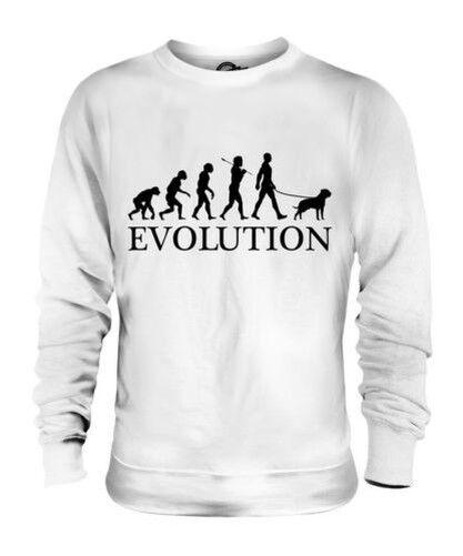 NEAPOLITAN MASTIFF EVOLUTION OF MAN UNISEX SWEATER  Herren Damenschuhe LADIES DOG GIFT