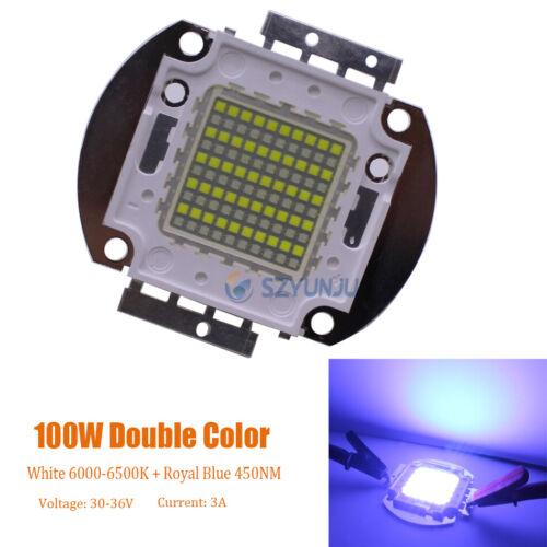 Royal Blue 28-36V  High Power LED Light lamp 50W 100W Double Color led white