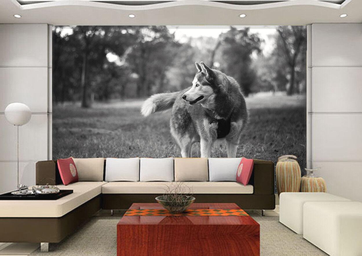 3D Wälder Gras Wolf 808 Tapete Wandgemälde Tapeten Bild Familie DE Lemon