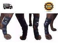 Knee Brace For Dogs Hock Protector Pet Therapeutic Dog Rear Leg 4 Straps Xl/l/s