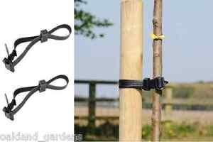 Packs of 10 Tree Ties 45cm Buckle Strap