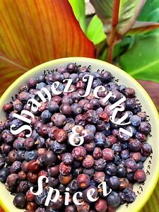 Juniper-Berries-100g-Premium-Quality-Shanez-Herbs-and-Spices