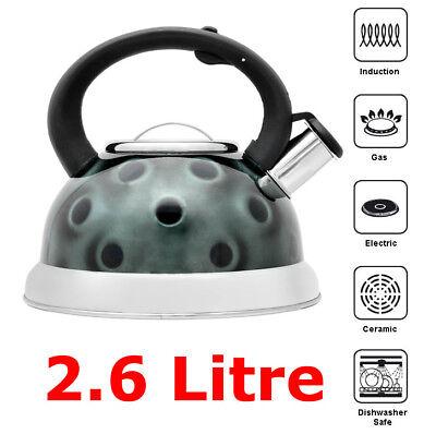 3.2L Grigio fischiettare Brocca Bollitore Acciaio Inox//3D//di design per Campeggio Pesca
