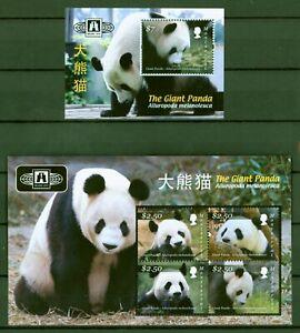 Suivi Des Vols Montserrat 2010-grand Panda-panda Géant-panda Bear - 1528-31 + Bloc 132